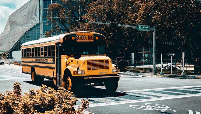 Autobuses escolares estadounidenses, ¿por qué son grandes y amarillos?